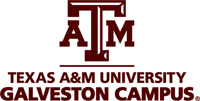 Texas A&M Universiy