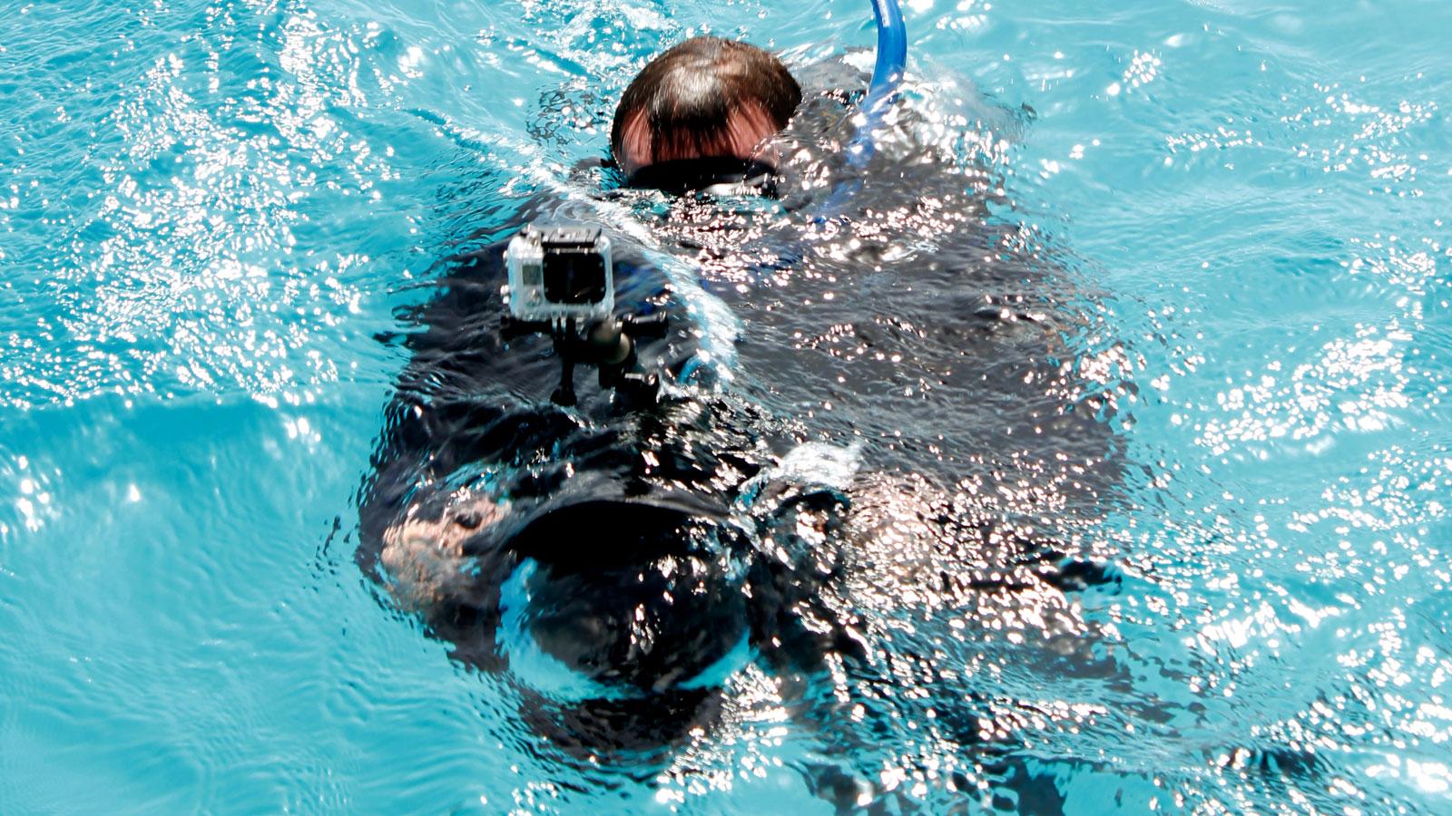Professionella Aufnahmen für die Delfin-Dokumentation