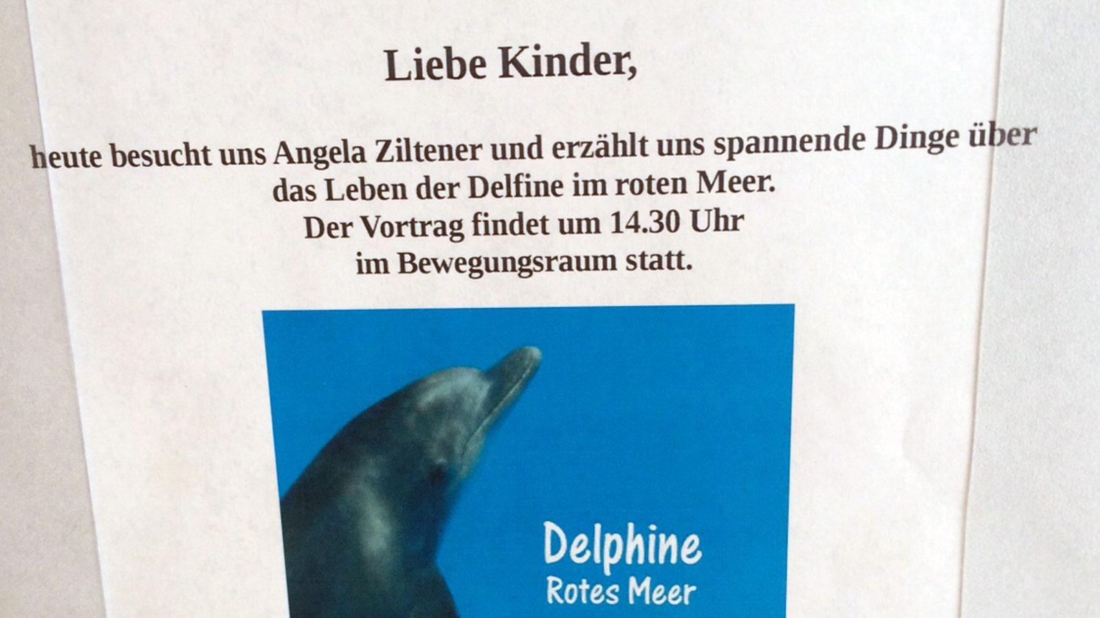 Vortrag über Delfine