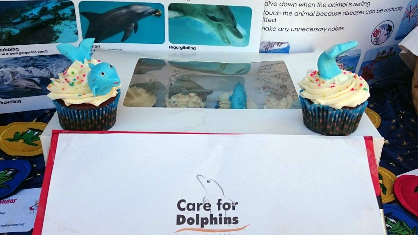 Care for Dolphins - Stand