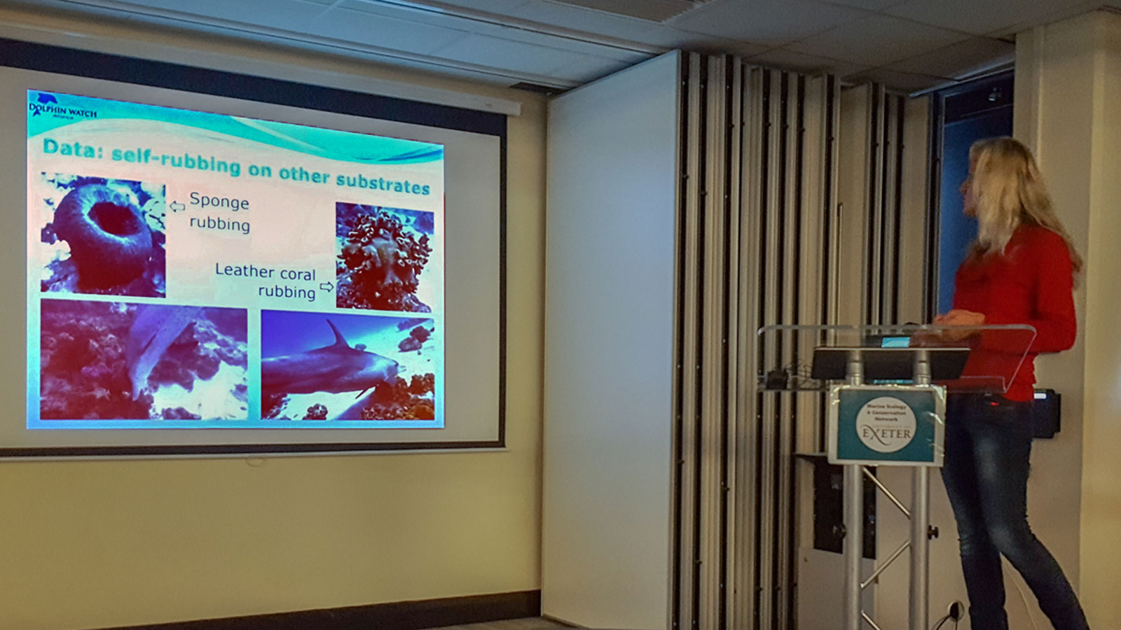 Presentation at the Southwest Bottlenose Dolphin Forum of Cornwall Wildlife Trust, UK