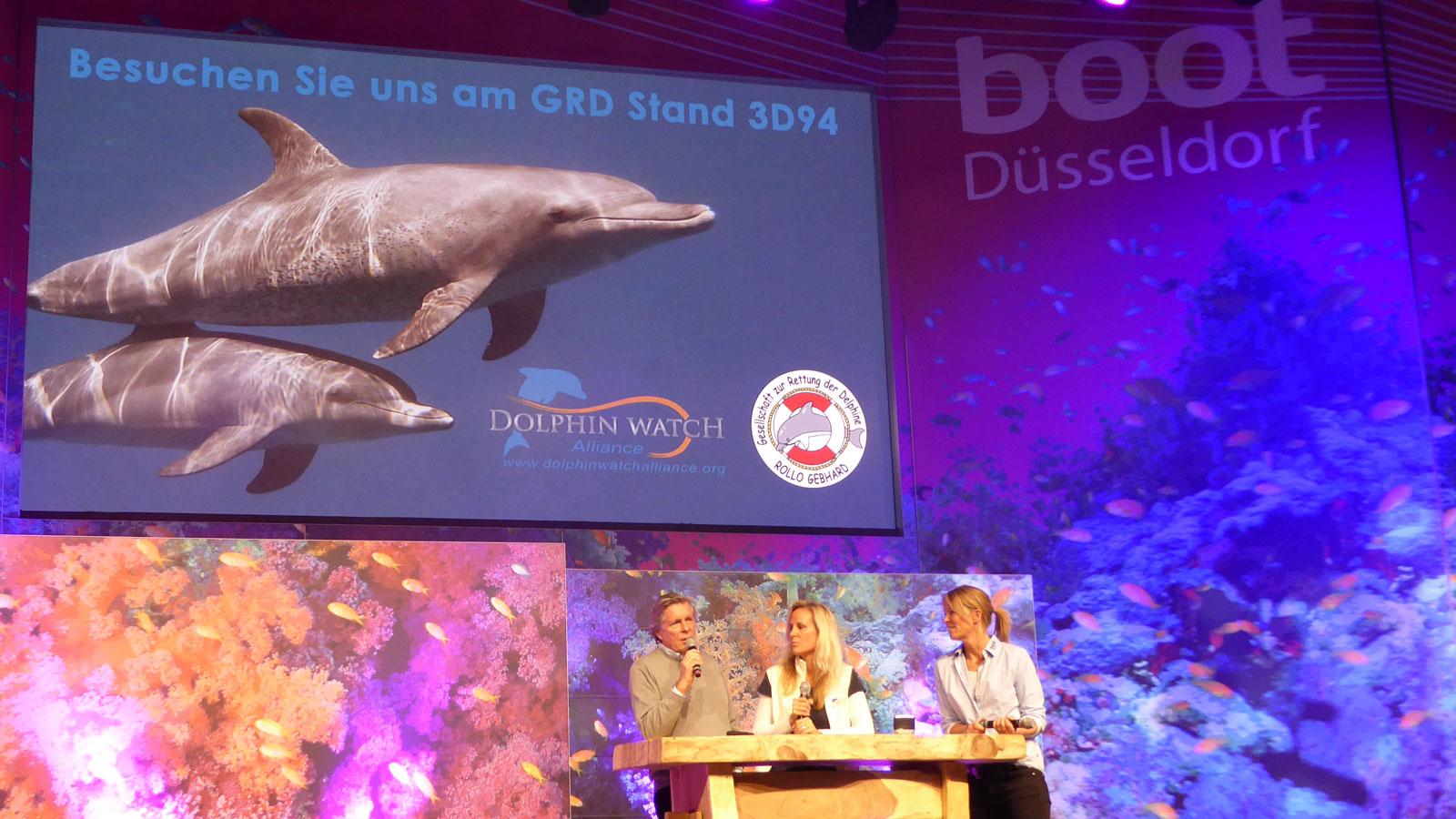 Informationen zu den Delfinschutzprojekten vor Hurghada