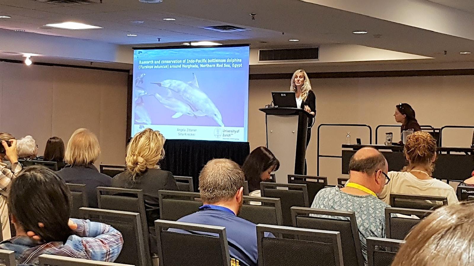 Angela Ziltener sprach über die Delfine im Roten Meer